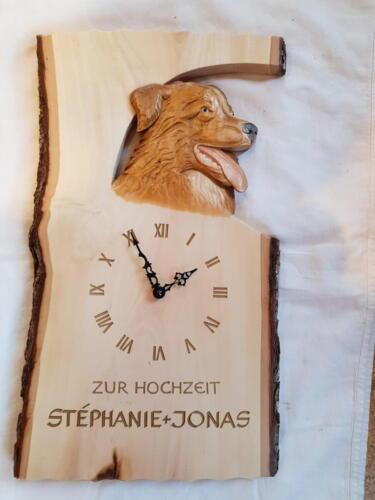 Nr: 2004 Australischer Schäferhund