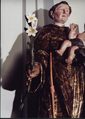 Lilie für Josef
