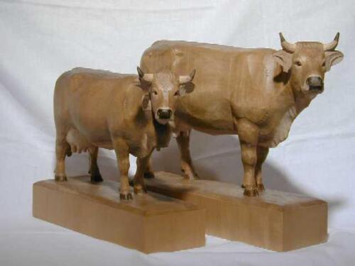 Nr: 5501 Kühe